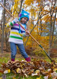 child raking