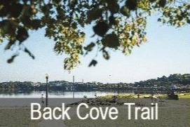 Back-Cove Opens in new window