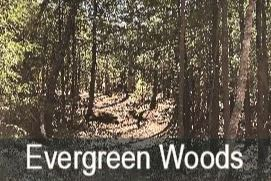 Evergreen-Cemetery
