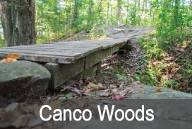 Canco-Woods