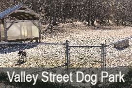 Valley St Dog Park Opens in new window